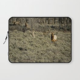 The Bull Elk Laptop Sleeve