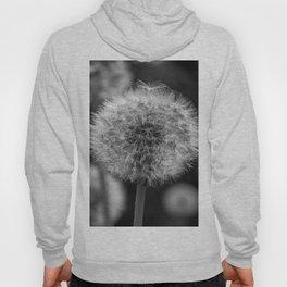 Monochromatic dandelion on black Hoody