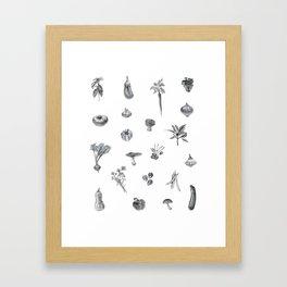 Favorite Veggies Framed Art Print