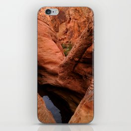 Mouse's Tank - Nevada iPhone Skin