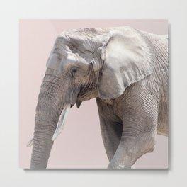 Elephant Dusty Pink Metal Print