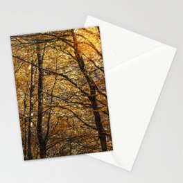 Forest in Autumn time Stationery Cards