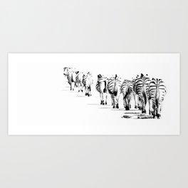Black and white zebras  Art Print