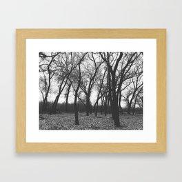 Ace of Spades Framed Art Print