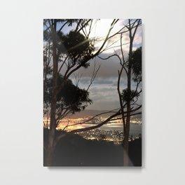 Harbour View at Sunset through Eucalyptus Trees Metal Print
