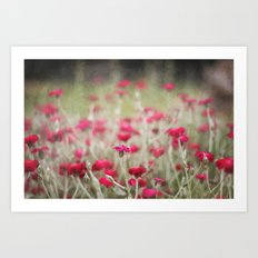 Red Flowers Only Art Print