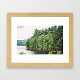 Lakeside Forest Framed Art Print