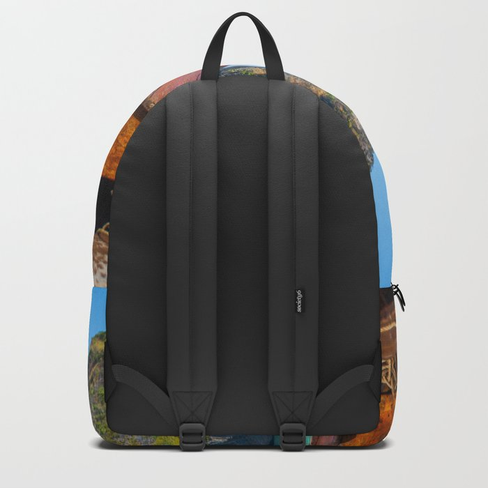 South Pacific Boat Launch Backpack