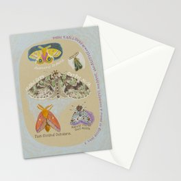 The Moths are so Beautiful Here Stationery Cards