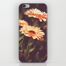 Salmon Colored Fields iPhone Skin