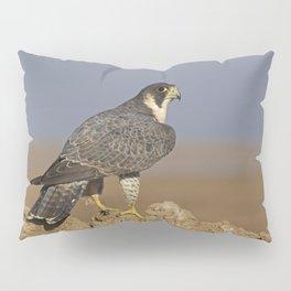 Falcon Scape Pillow Sham