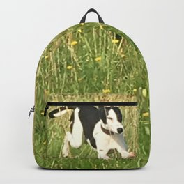 Happiness is running wild and free, and not letting your feet touch the ground! Backpack