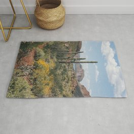 Arizona Spring Rug