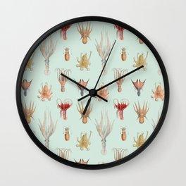 Vintage Mollusks Wall Clock