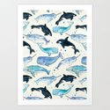 Whales, Orcas & Narwhals by tangerinetane