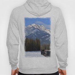 """Banff Wolf in Winter with Mt Cascade"" Hoody"