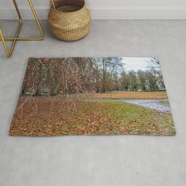 The colours of autumn Rug