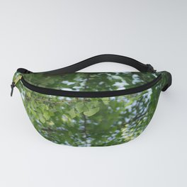 Ginkgo biloba tree in the city Fanny Pack