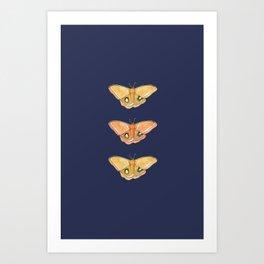 Luna Moth Yellow Navy Art Print