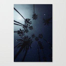 Palm Trees, Night Sky, Stars, Moon Canvas Print