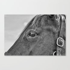 Look Into The Eye Canvas Print