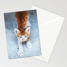 241. Red Kitty, Greece Stationery Cards