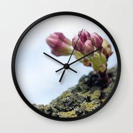 Cherry Blossoms 5 Wall Clock