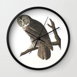 Great Cinereous Owl - Illustration by J.J. Audubon Wall Clock