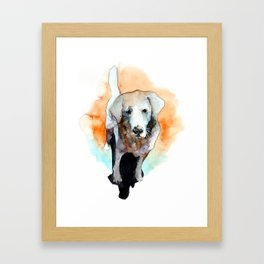 dog#20 Framed Art Print