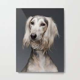 Saluki Faruk - Dog portrait - Skinny Dogs collection Metal Print