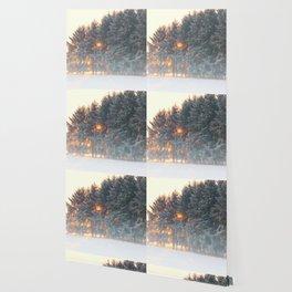 Sunrise in winter cloud forest Wallpaper