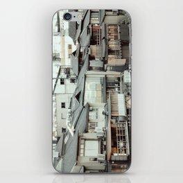 Kamogawa iPhone Skin