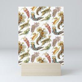 Ernst Haeckel - Nudibranchia (Snails) Mini Art Print