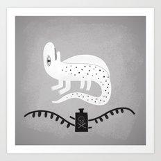 never trust a salamander.  Art Print