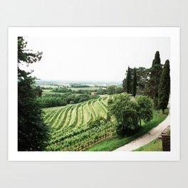 Cantina Aperte on the Italian/Slovenian border Art Print