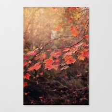 Autumn Leaves of Red Canvas Print