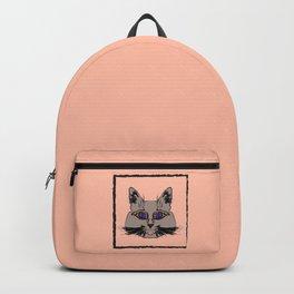Cute gray cat. Muzzle cartoon cat in a box. Backpack