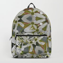 Lacy Serviceberry kaleidoscope - Amelanchier 0033 k5 Backpack
