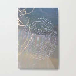 Rainbow Spider Metal Print