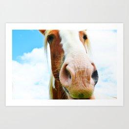 Horse in the Clouds Art Print