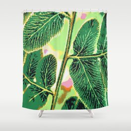 party fern Shower Curtain