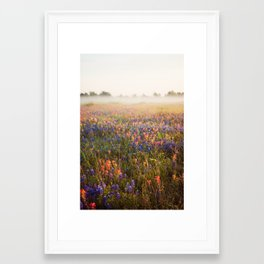 morning flowers Framed Art Print