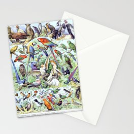 Adolphe Millot - Oiseaux A - French vintage poster Stationery Cards