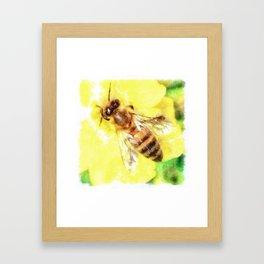The Pollen Collector Honeybee Watercolor Framed Art Print
