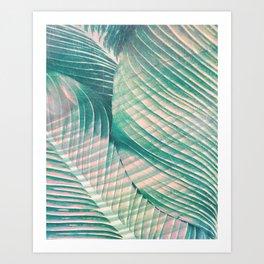 Tropical Colorful Leaves Art Print