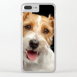 Jack Russell Terrier Dog on Isolated Black Background in studio Clear iPhone Case