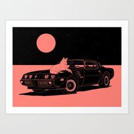 Coyote on Car Art Print