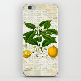 Lemon Botanical print on antique almanac collage iPhone Skin