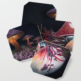 Hadal Borealis Coaster