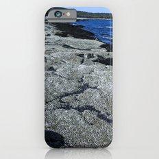 Barnacle Rocks at Acadia iPhone 6s Slim Case